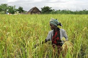 Tanzania, uno dei paesi in cui Oxfam lavora oggetto del reportage di Beatrice Masini